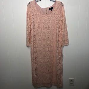 NWT Ronni Nicole sheath pink lace dress. Size 14